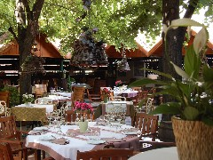 Top 5 gardens for Serbian breakfast in Belgrade